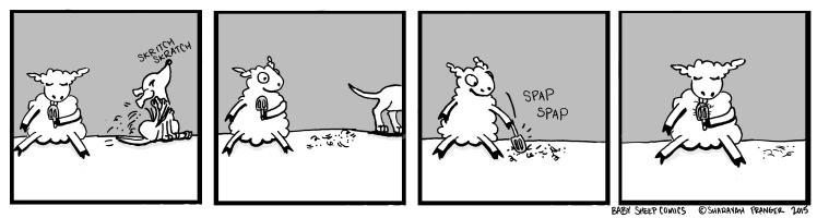 baby sheep 14