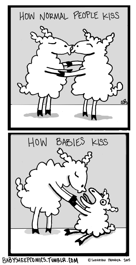 baby sheep 17