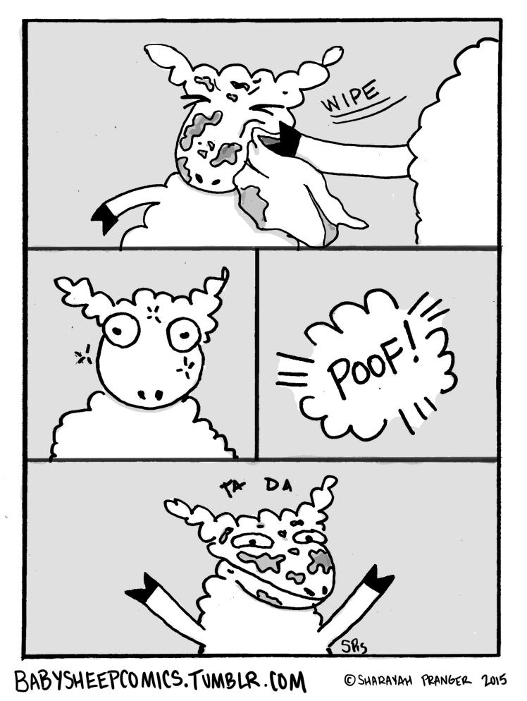 baby sheep 27