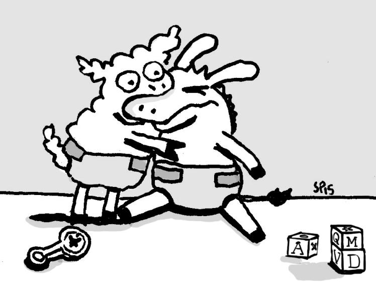 baby sheep 9