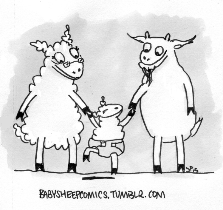 baby sheep 32