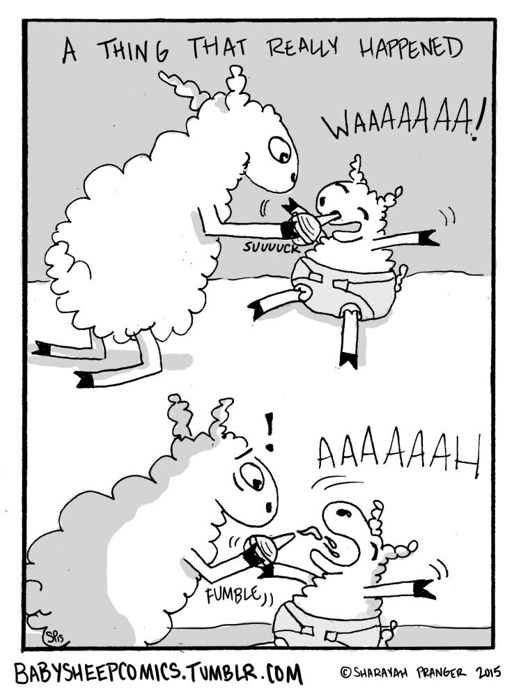 baby sheep 42