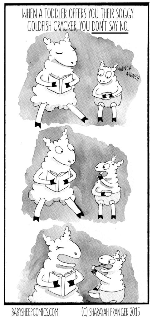 baby sheep 68