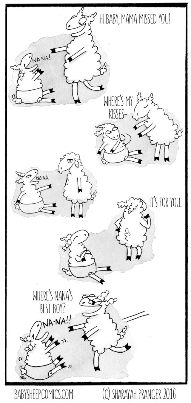 baby sheep 79